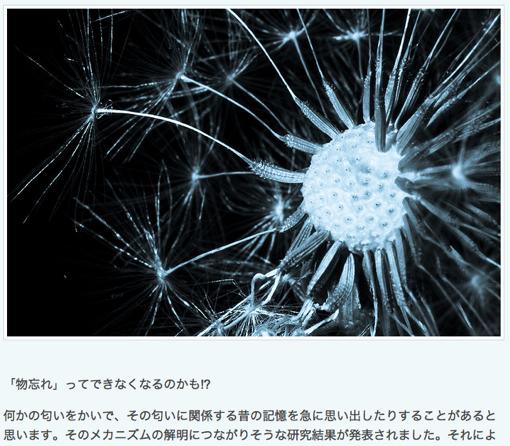 「記憶」は実在する!MIT、神経細胞を刺激して人為的に思い出させる実験に成功