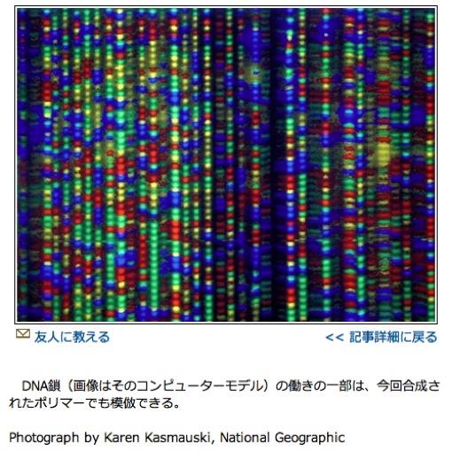 人工的に合成したDNA