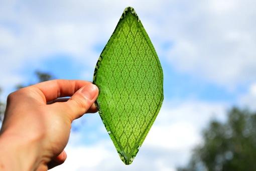 酸素を作り出す人工の葉っぱ